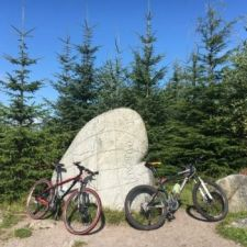 pic: MTBs in forest free hire for father's day